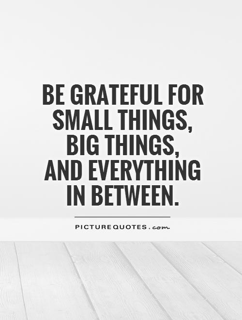 be-grateful-for-small-things-big-things-and-everything-in-between-quote-1